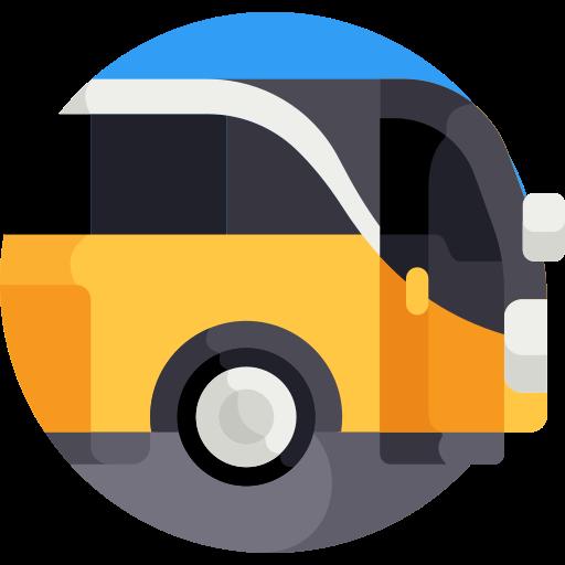 Permiso de conducir Autobús (D)